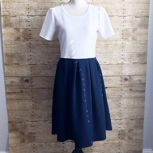 LuLaRoe Dresses - LULAROE | AMELIA | EUC | LARGE |